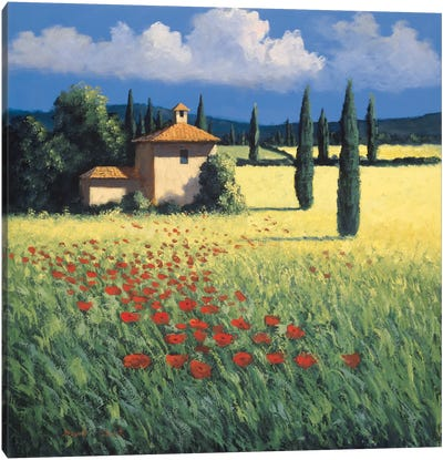 Summer's Brilliance Canvas Art Print