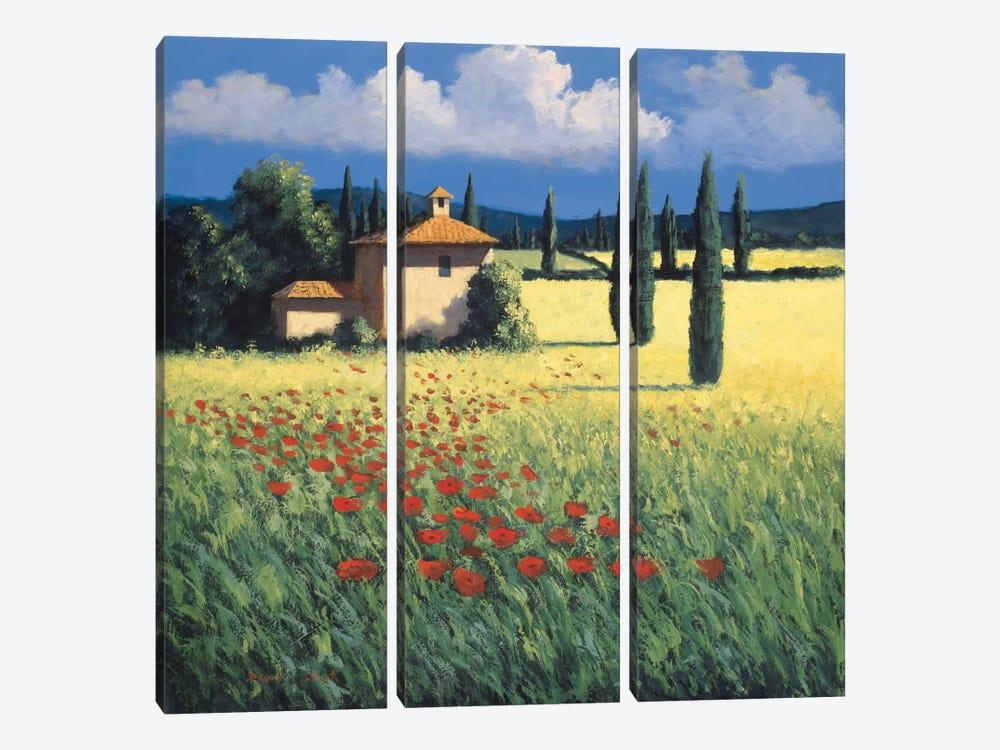 Summer's Brilliance by David Short 3-piece Canvas Artwork