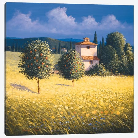 Sun Kissed Orchard II Canvas Print #DSH17} by David Short Canvas Artwork