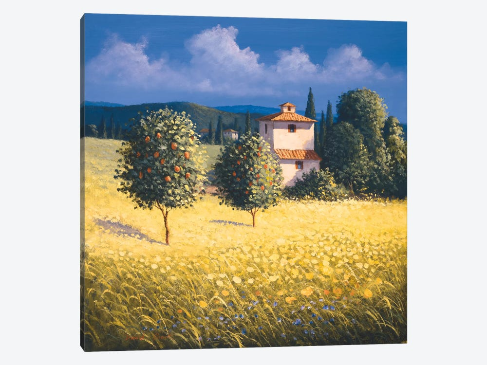 Sun Kissed Orchard II by David Short 1-piece Canvas Wall Art