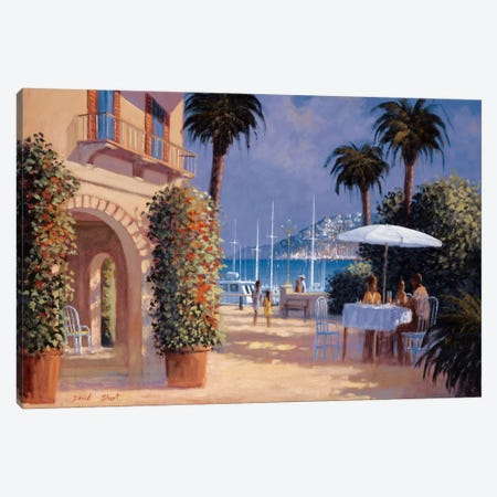 Through The Palms Canvas Print #DSH18} by David Short Art Print