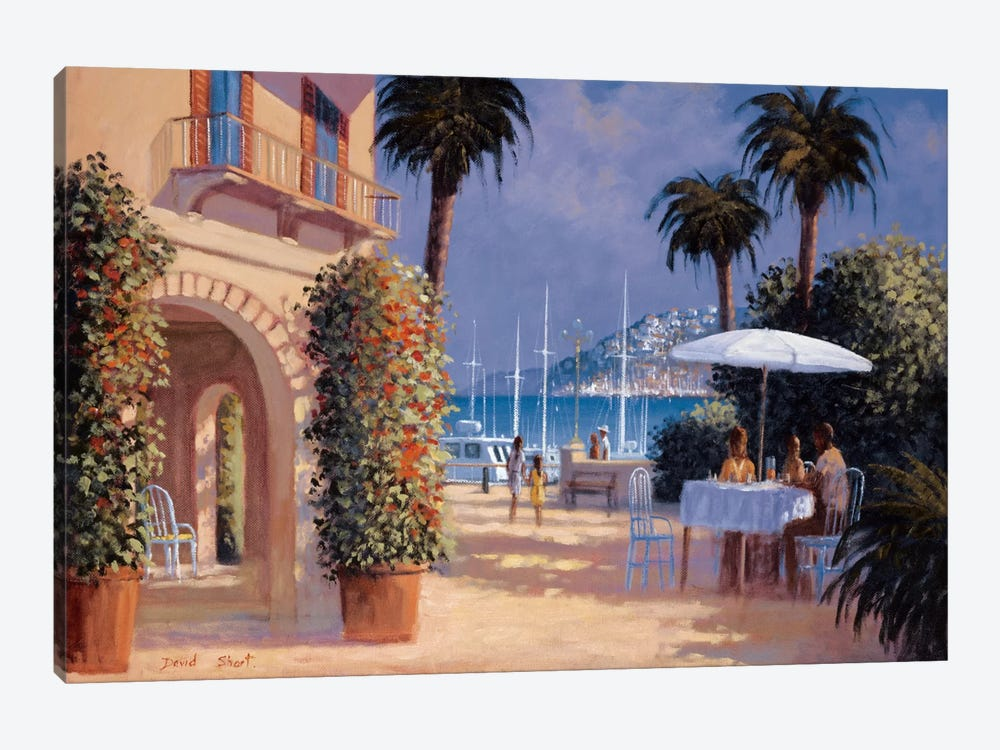 Through The Palms by David Short 1-piece Canvas Print
