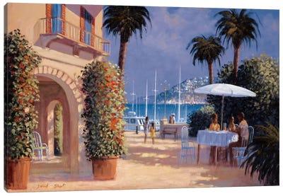 Through The Palms Canvas Art Print