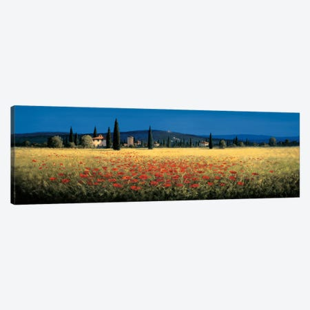 Tuscan Panorama, Poppies Canvas Print #DSH19} by David Short Canvas Print