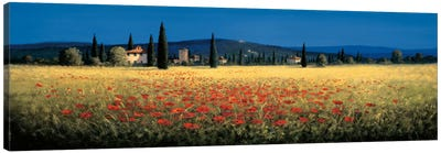 Tuscan Panorama, Poppies Canvas Art Print