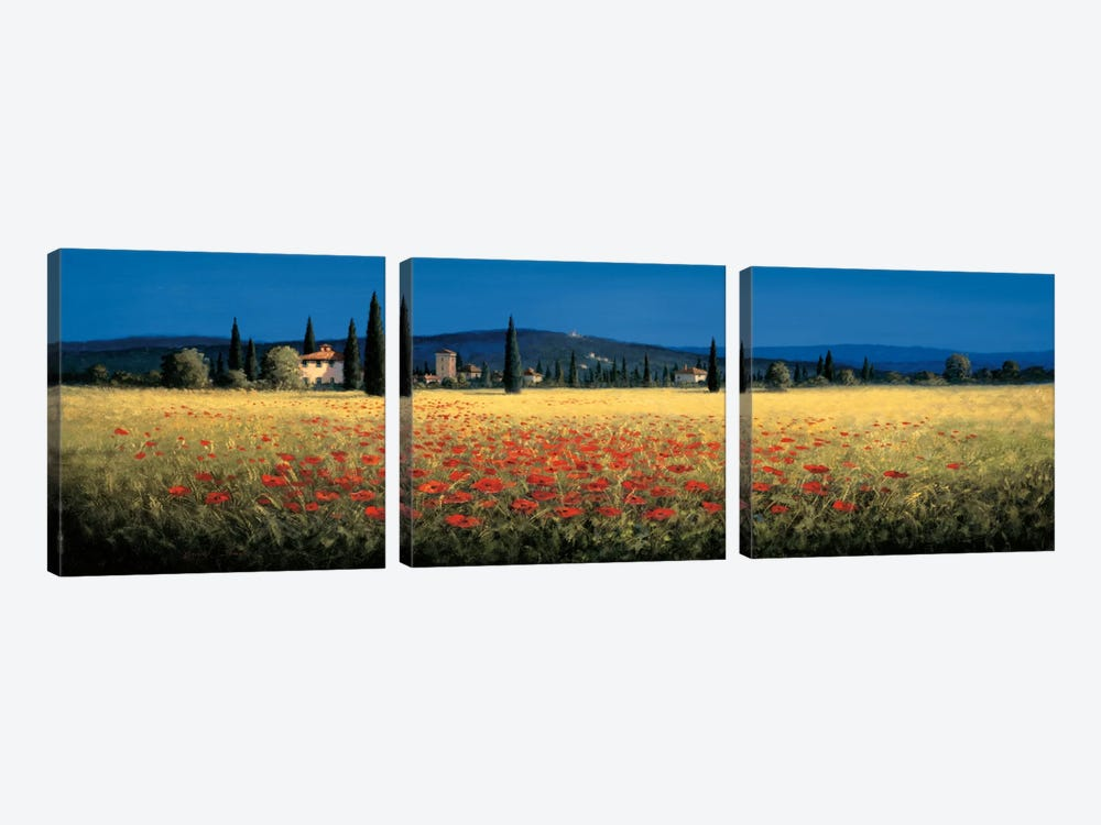 Tuscan Panorama, Poppies by David Short 3-piece Canvas Art