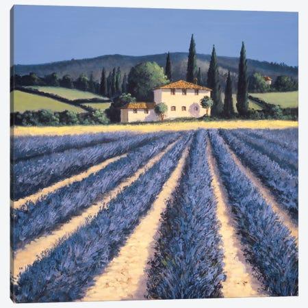 Colors Of Summer Canvas Print #DSH1} by David Short Art Print