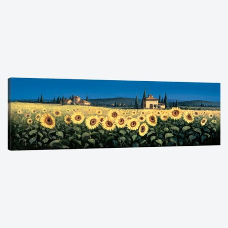 Tuscan Panorama, Sunflowers Canvas Print #DSH20} by David Short Canvas Art