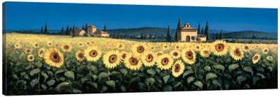Tuscan Panorama, Sunflowers Canvas Art Print