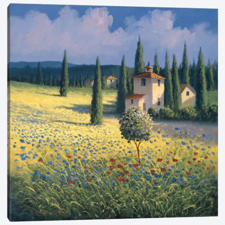 Tuscan Poppies I Canvas Print #DSH21} by David Short Canvas Artwork