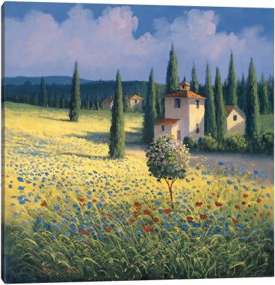 Tuscan Poppies I Canvas Art Print