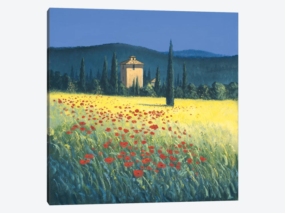 Tuscan Poppies II by David Short 1-piece Canvas Wall Art