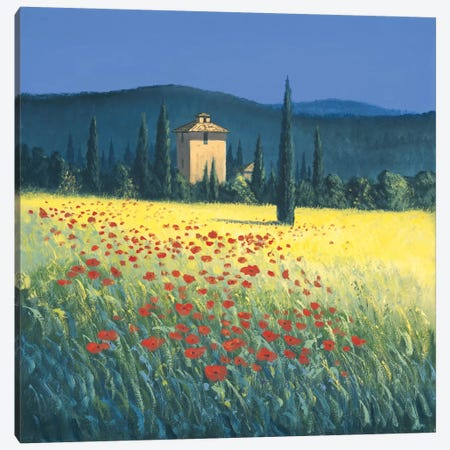 Tuscan Poppies II Canvas Print #DSH22} by David Short Canvas Artwork
