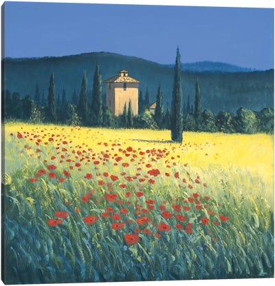 Tuscan Poppies II Canvas Art Print