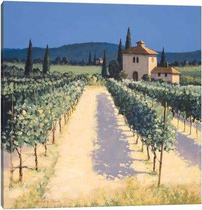 Vineyard Shadows Canvas Art Print