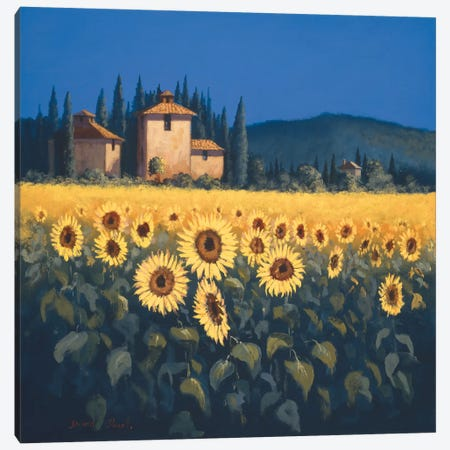 Golden Warmth II Canvas Print #DSH3} by David Short Canvas Art Print