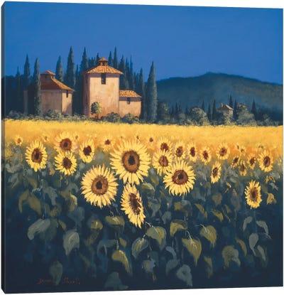 Golden Warmth II Canvas Art Print