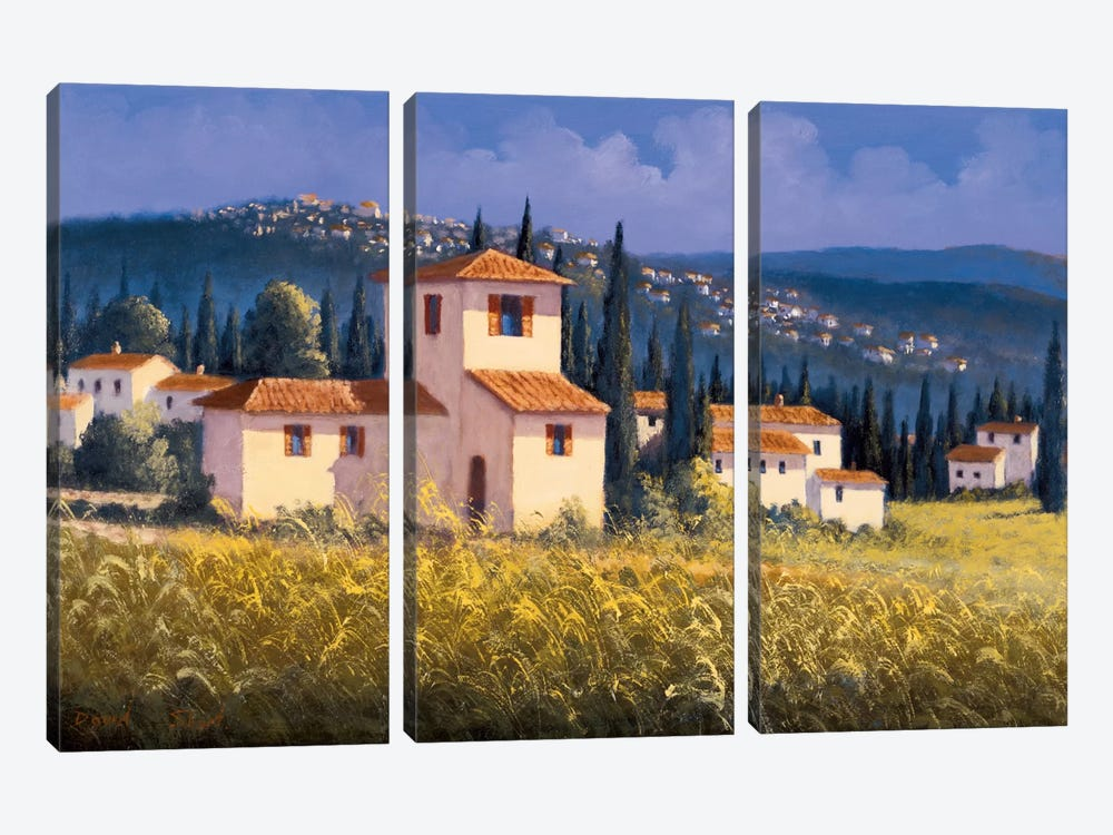 Hillside Village by David Short 3-piece Canvas Art