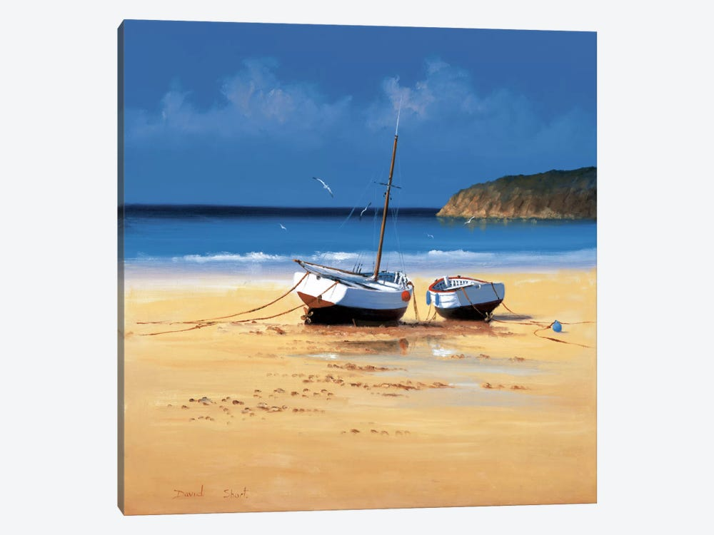Moorings Low Tide by David Short 1-piece Canvas Artwork