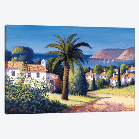 Palm Trail Canvas Print #DSH7} by David Short Canvas Wall Art