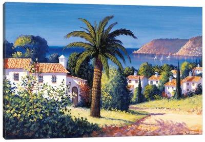 Palm Trail Canvas Art Print