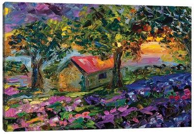 Celebrating Each New Day Canvas Art Print