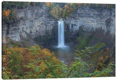 The Falls Canvas Art Print