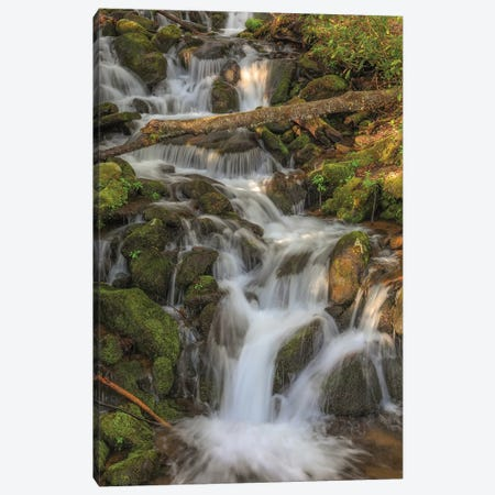 Waterfall Canvas Print #DSP130} by Dan Sproul Canvas Wall Art