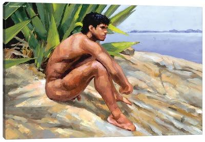 Costa Verde Canvas Art Print