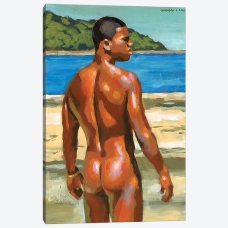 Colors Of Bahia Canvas Print #DSS17} by Douglas Simonson Art Print