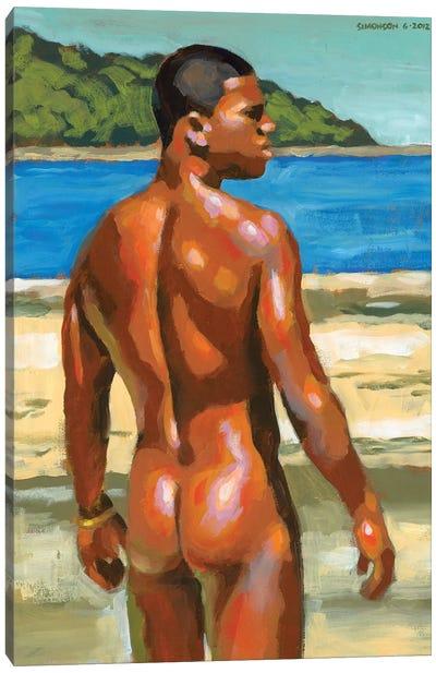 Colors Of Bahia Canvas Art Print