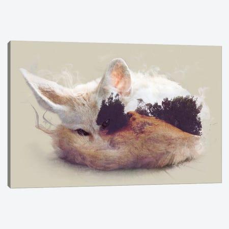Desert Fox Canvas Print #DTA10} by Dániel Taylor Canvas Art Print