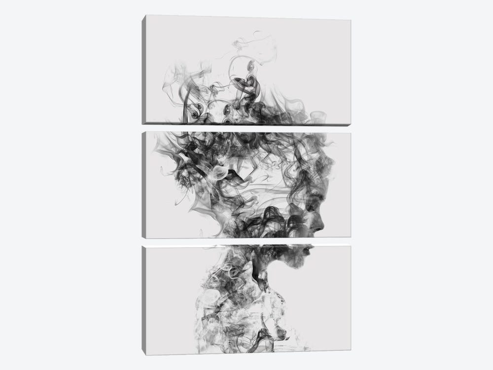 Dissolve Me by Dániel Taylor 3-piece Canvas Artwork