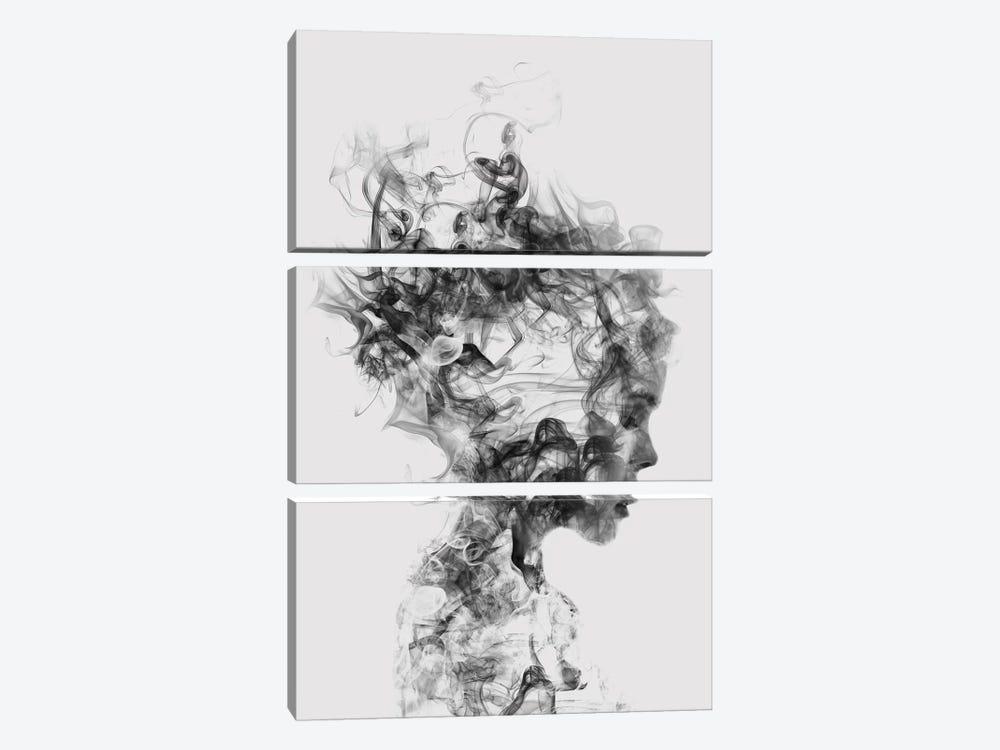 Dissolve Me by Dániel Taylor 3-piece Canvas Artwork