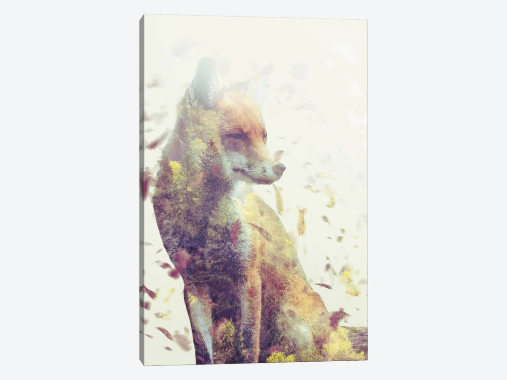Fall Fox by Dániel Taylor 1-piece Canvas Artwork