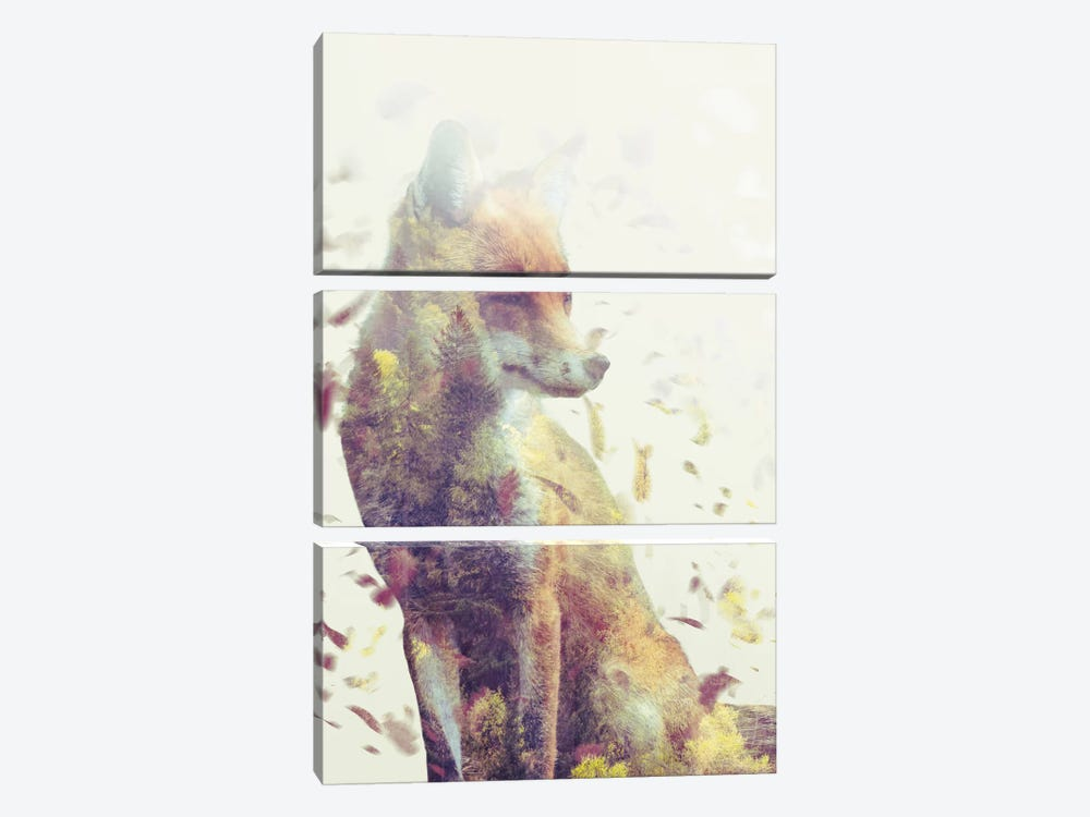 Fall Fox by Dániel Taylor 3-piece Canvas Wall Art