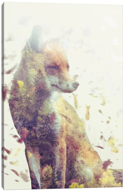 Fall Fox Canvas Art Print