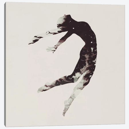 Float Away I Canvas Print #DTA16} by Dániel Taylor Canvas Wall Art