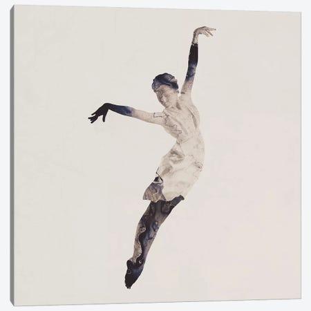 Float Away II Canvas Print #DTA17} by Dániel Taylor Canvas Artwork