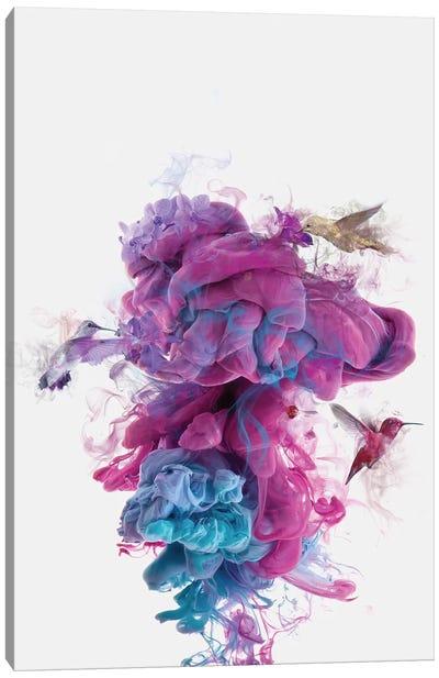 Hummingbirds Ink Canvas Print #DTA23
