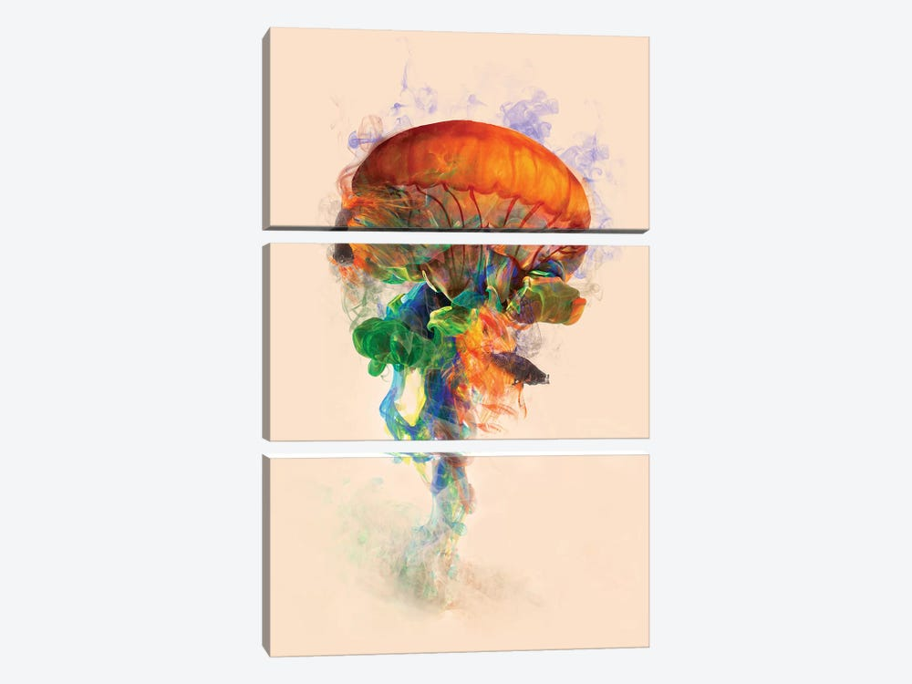 Jellyfish Ink by Dániel Taylor 3-piece Canvas Art