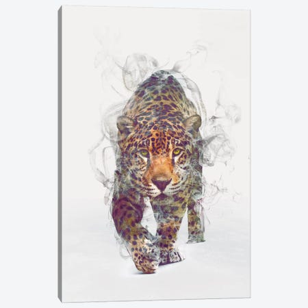 Leopard Canvas Print #DTA28} by Dániel Taylor Canvas Wall Art