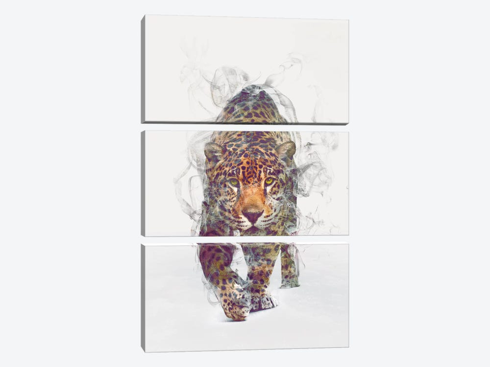 Leopard by Dániel Taylor 3-piece Canvas Artwork