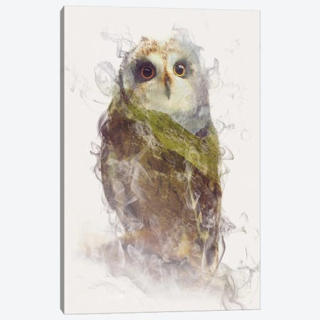 Owl Canvas Print #DTA34} by Dániel Taylor Canvas Artwork