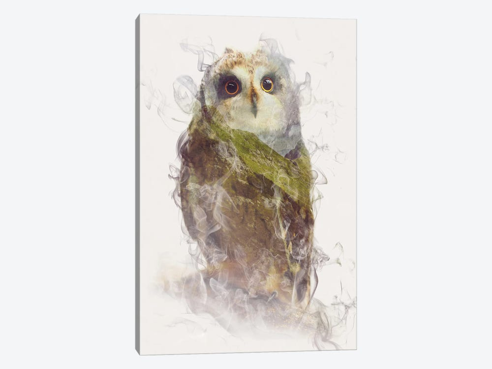 Owl by Dániel Taylor 1-piece Canvas Print