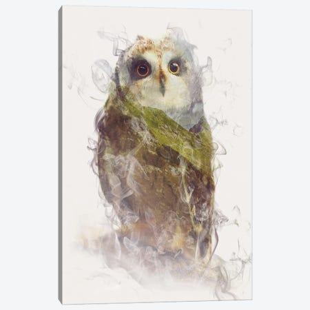 Owl Canvas Print #DTA34} by Dániel Taylor Canvas Artwork