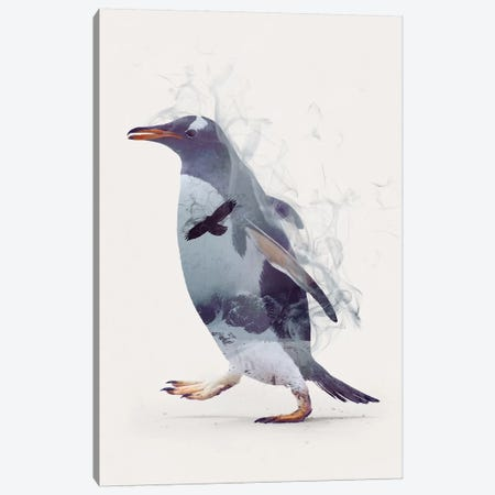 Penguin Dreams Canvas Print #DTA35} by Dániel Taylor Canvas Artwork