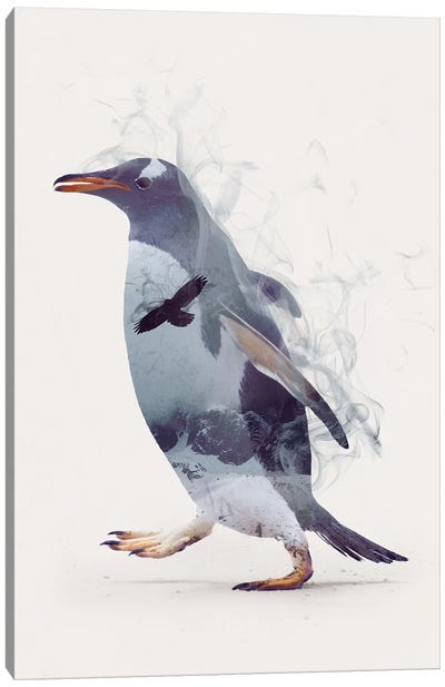 Penguin Dreams Canvas Art Print