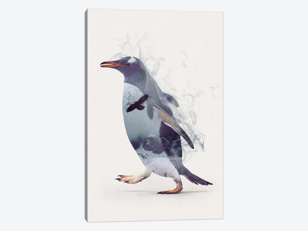 Penguin Dreams by Dániel Taylor 1-piece Canvas Artwork