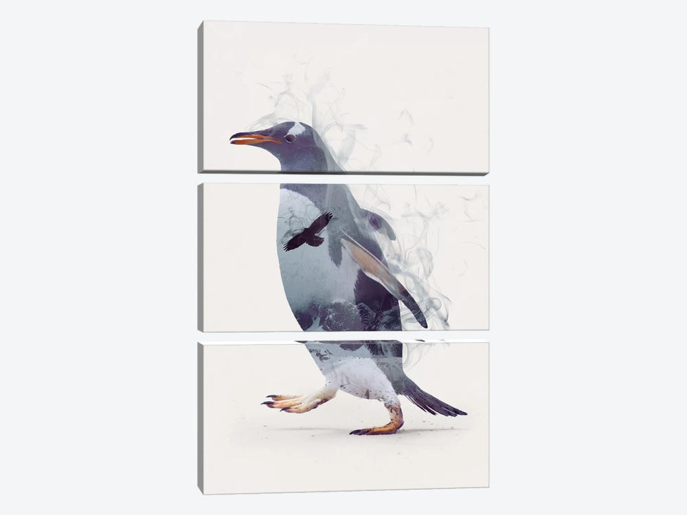 Penguin Dreams by Dániel Taylor 3-piece Canvas Artwork